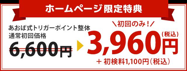 初回価格6,600円が初回のみ3,960円+1,100円に!